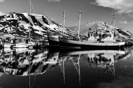Dalvik - Leica