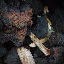 Drift wood and lava Canon