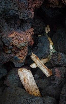 Drift wood and lava Canon
